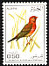 Red-billed Firefinch Lagonosticta senegala  1976 Algerian birds