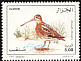 Common Snipe Gallinago gallinago  1995 Birds