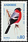 Eurasian Bullfinch Pyrrhula pyrrhula