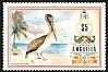 Brown Pelican Pelecanus occidentalis  1972 Definitives