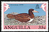 Brown Booby Sula leucogaster  1990 Christmas