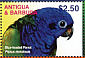 Blue-headed Parrot Pionus menstruus