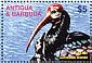 Southern Bald Ibis Geronticus calvus