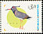 Southern Lapwing Vanellus chilensis  1998 Argentine fauna
