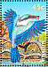 Sacred Kingfisher Todiramphus sanctus