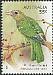 Green Catbird Ailuroedus crassirostris