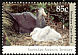 Northern Giant Petrel Macronectes halli  1992 Antarctic wildlife