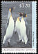 King Penguin Aptenodytes patagonicus  1993 Antarctic wildlife