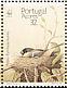 Azores Bullfinch Pyrrhula murina