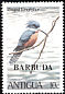 Ringed Kingfisher Megaceryle torquata  1980 Overprint BARBUDA on Antigua 1980.01