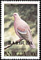 Plain Pigeon Patagioenas inornata  1980 Overprint BARBUDA on Antigua 1980.01