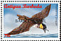 Pomarine Jaeger Stercorarius pomarinus  1998 Overprint BARBUDA MAIL on Antigua & B 1996.02 Strip