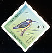 Common Kingfisher Alcedo atthis  1994 Birds in the Red Book