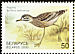 Eurasian Stone-curlew Burhinus oedicnemus  2000 Birds in the Red Book