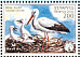 White Stork Ciconia ciconia  2002 BirdLife International Sheet