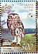 Little Owl Athene noctua  2008 Owls BirdLife Sheet with 2 sets