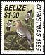 White-winged Dove Zenaida asiatica