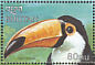 Toco Toucan Ramphastos toco  1999 Birds of the world