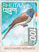 Black-naped Monarch Hypothymis azurea  1999 Birds of the Himalayas