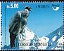 Andean Condor Vultur gryphus