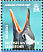 Gentoo Penguin Pygoscelis papua  2008 Penguins of the Antarctic Sheet