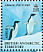 Adelie Penguin Pygoscelis adeliae  2008 Penguins of the Antarctic Sheet