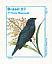 Blue-black Grassquit Volatinia jacarina