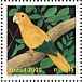 Golden Parakeet Guaruba guarouba