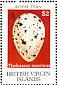 Royal Tern Thalasseus maximus