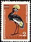 Black Crowned Crane Balearica pavonina