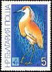 Squacco Heron Ardeola ralloides