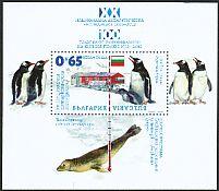 Gentoo Penguin Pygoscelis papua