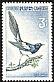 Eurasian Magpie Pica pica