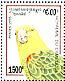 Yellow-headed Amazon Amazona oratrix