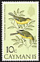Vitelline Warbler Setophaga vitellina  1974 Birds