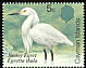 Snowy Egret Egretta thula  1984 Birds of the Cayman Islands