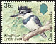 Belted Kingfisher Megaceryle alcyon  1984 Birds of the Cayman Islands