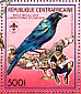 Splendid Starling Lamprotornis splendidus  1988 Scouts and birds