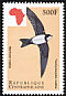 Alpine Swift Tachymarptis melba  1999 Birds of Africa