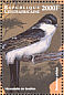 Common House Martin Delichon urbicum  1999 Birds of Africa