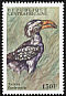 Eastern Yellow-billed Hornbill Tockus flavirostris  2000 Birds of Africa