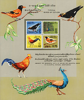 Southern Hill Myna Gracula indica  1966 Birds of Ceylon Sheet, imp