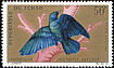 Greater Blue-eared Starling Lamprotornis chalybaeus  1967 Birds