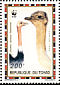 Common Ostrich Struthio camelus  1996 WWF Sheet