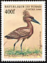 Hamerkop Scopus umbretta  1999 African birds