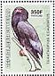 Bateleur Terathopius ecaudatus  2003 Birds of prey Sheet