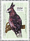 Long-crested Eagle Lophaetus occipitalis  2003 Birds of prey Sheet