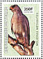 Dark Chanting Goshawk Melierax metabates  2003 Birds of prey Sheet