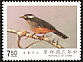 White-eared Sibia Heterophasia auricularis  1990 Taiwan birds