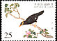 Common Hill Myna Gracula religiosa  2000 National Palace Museum�s bird manual